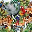 День животных.jpg